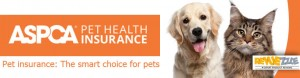 ASPCA Pet Insurance Review