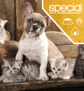 Best Pet Insurance for Specialty Coverage