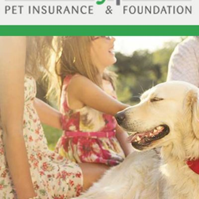 Healthy Paws Pet Insurance Review - Pinterest