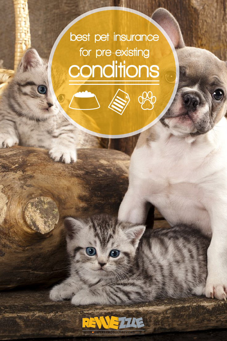 Despite our best efforts we were only able to find three companies that offered any sort of coverage for pre-existing conditions. #pets #insurance #pre-existing