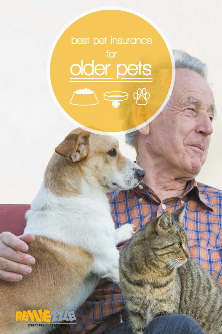 These companies all provide coverage of everything you should expect from pet insurance, along with bonus services that will help your pet maintain its playful attitude no matter how old it is. #pets #insurance #senior