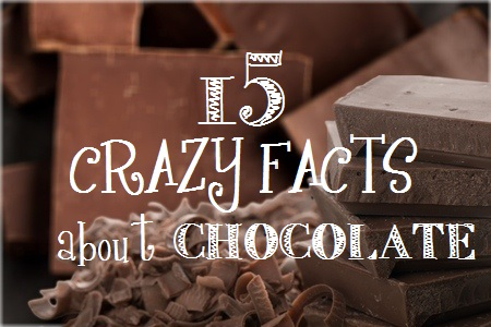 15 Crazy Wild Facts About Chocolate | Revuezzle