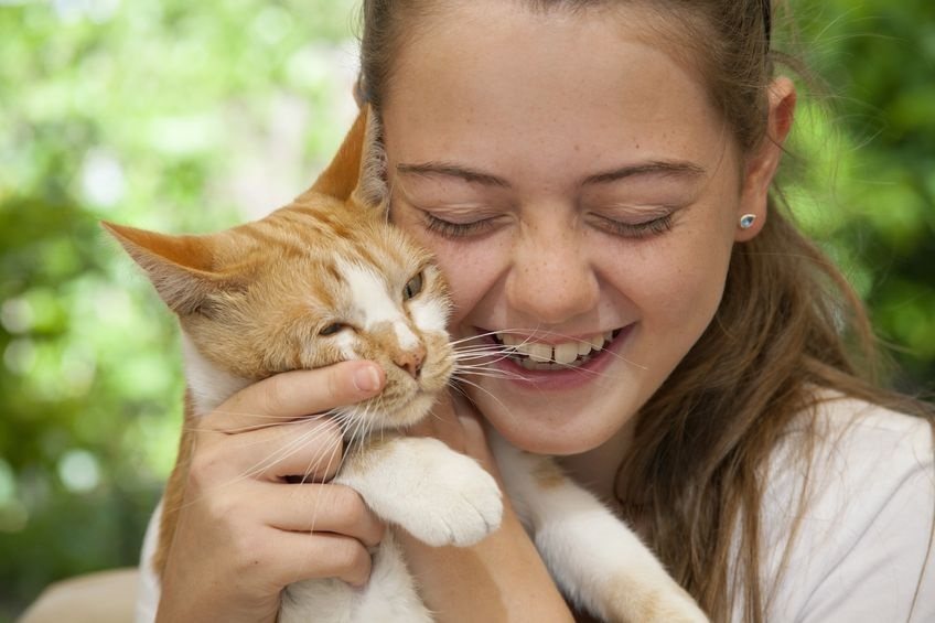 Celebrate Hug Your Cat Day with a Great Cat-Friendly Pet