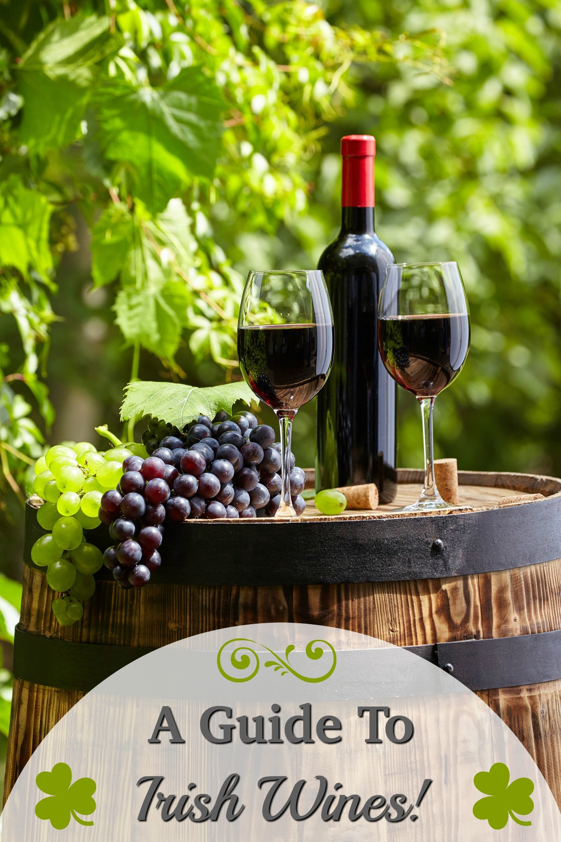 Did you know that Ireland produces more than just great beer? Just in Time for St. Patricks Day - our Guide to Irish Wines! #StPatricksDay