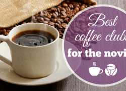 Best Coffee Clubs for the Novice