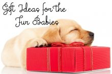 Gift Ideas for the Fur Babies