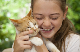 Celebrate Hug Your Cat Day with a Great Cat-Friendly Pet Insurance Policy