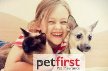 PetFirst Insurance Review